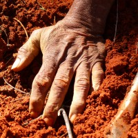red hand on dirt