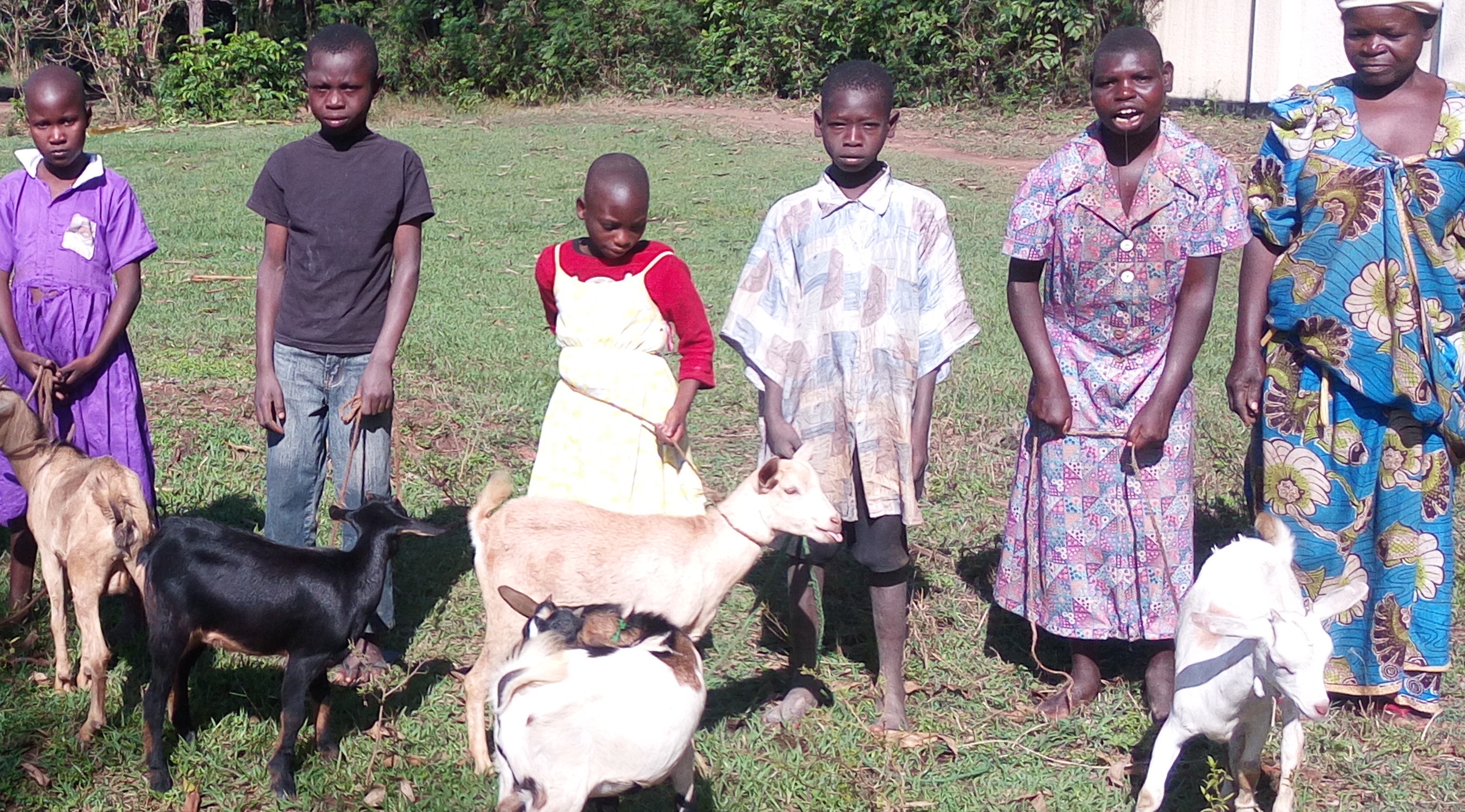 uganda-happy-new-goat-owners-through-nacomass-program_cropped